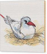 Red-tailed Tropicbird On Aitutaki Wood Print