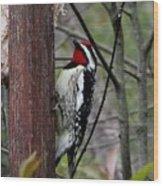 Red Throat Wood Print