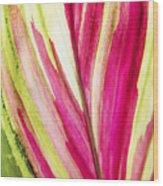 Red Ti Leaf Wood Print
