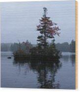 Red Tree Island Wood Print