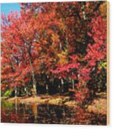Red Trees By Lake Wood Print