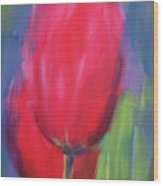 Red Tulips 1 Wood Print