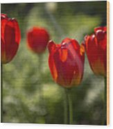 Red Tulips In Light Wood Print