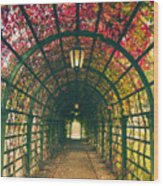 Red Tunnel Wood Print