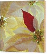 Red Velvet Wood Print by Bobby Villapando