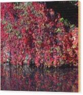 Red Waste Wood Print