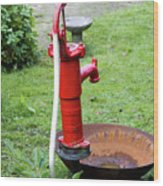 Red Water Pump Wood Print