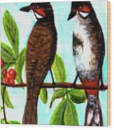 Red-whiskered Bulbul Bird, #246 Wood Print