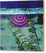 Red-white-blue Wood Print
