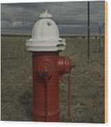 Red  White Hydrant Wood Print