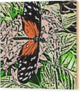Red Winged Butterfly Wood Print