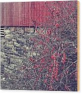 Red Winter Wood Print