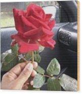 Red Winter Rose Wood Print