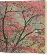 Red Zen Wood Print