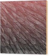 Red.385 Wood Print