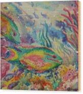 Redband Parrotfish Wood Print