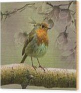 Redbreast Bird Wood Print