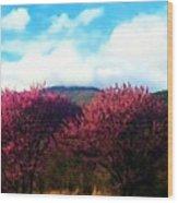 Redbud In The Blue Ridge Wood Print