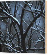 Redbud Mystery Wood Print