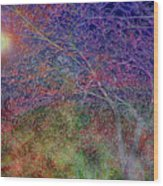 Redbud's Wood Print