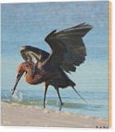 Reddish Egret Nabs A Fish Wood Print