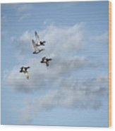 Redheaded Ducks Riding The Storm Wood Print