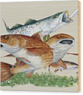 Reds And Trout Wood Print by Kevin Brant