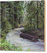 Redwood Stream Wood Print