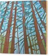 Redwood Trees Wood Print