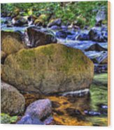 Reeder Creek From Under The Bridge Wood Print