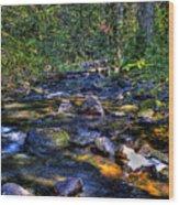 Reeder Creek II Wood Print