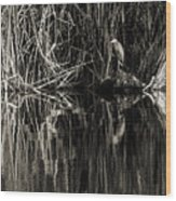 Reeds And Heron Wood Print