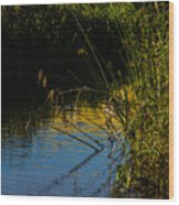 Reeds And The Riverside Wood Print
