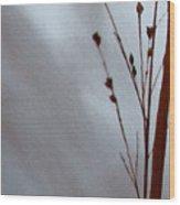 Reeds Lake Wood Print