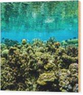 Reef At Ahnd Atoll Wood Print