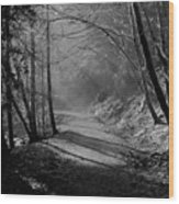 Reelig Forest Walk Wood Print