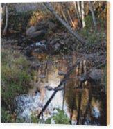 Reflect Upon Autumn Wood Print