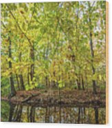 Reflected Color Of Autumn Wood Print