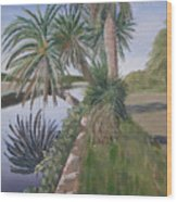 Reflected Palms Wood Print