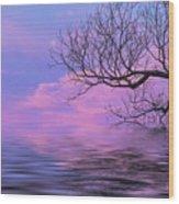 Reflecting On Life Wood Print