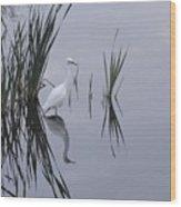 Reflecting Egret Wood Print