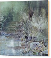 Reflecting On A Misty Morning Wood Print