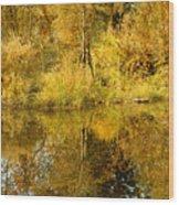 Reflecting On Autumn Leaves Wood Print