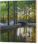Reflecting Pool Roosevelt Park Wood Print