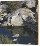 Reflecting Rock-sequoia National Park Wood Print