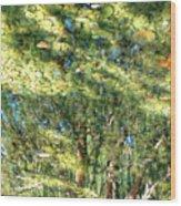 Reflecting Trees On Quiet Pond Wood Print