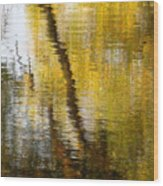 Fall Reflections 3 On Jamaica Pond Wood Print