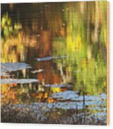 Fall Reflections 5 On Jamaica Pond Wood Print
