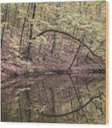Ridge Run Reflection Wood Print
