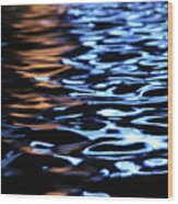 Reflection In Fountain Wood Print
